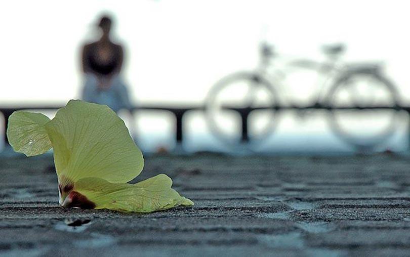 A moça da bicicleta