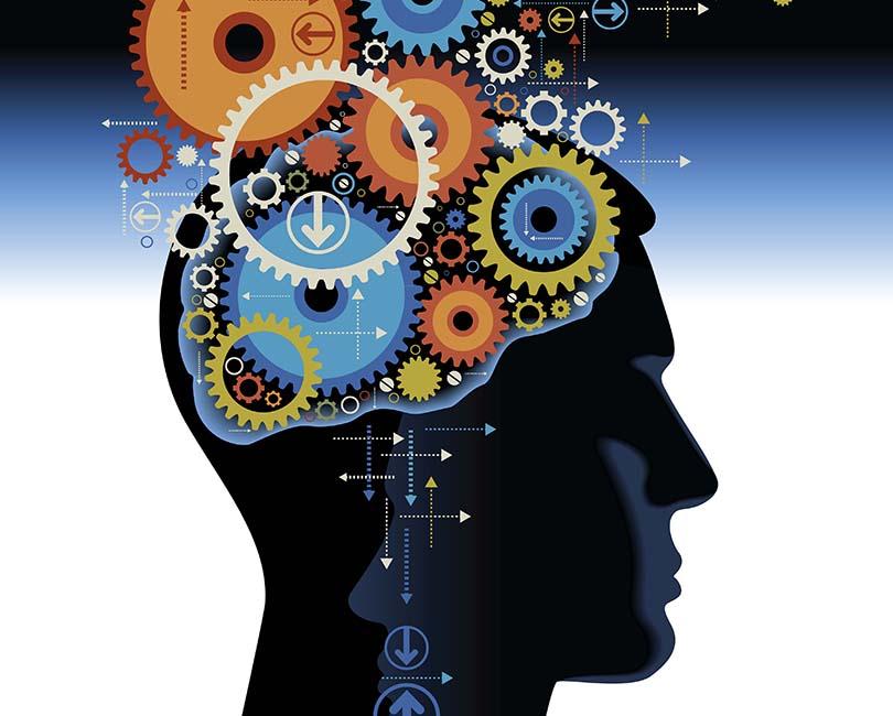 Revelações da neurociência úteis para sua carreira