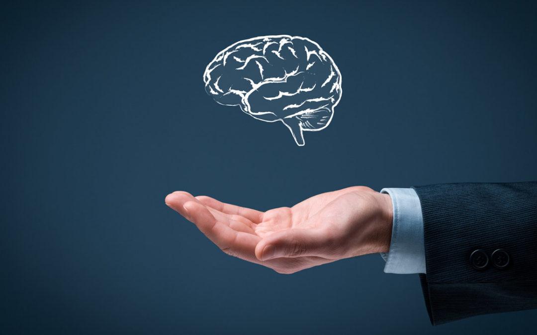 Os pilares da inteligência emocional